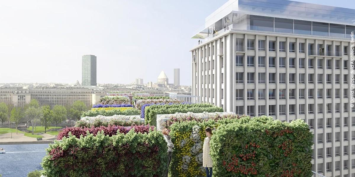 Toits-terrasses aménagés du programme immobilier Rue Agrippa d'Aubigné à Paris 4